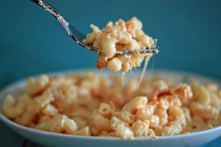 https://threegallonsofcrazy.com/2016/12/06/the-best-macaroni-and-cheese-ever/